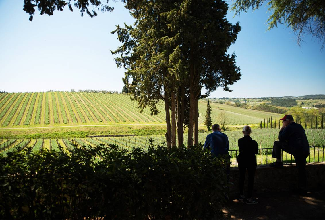 Leave the city chaos with our tour from Florence and reach the fascinating countryside of the Chianti countryside