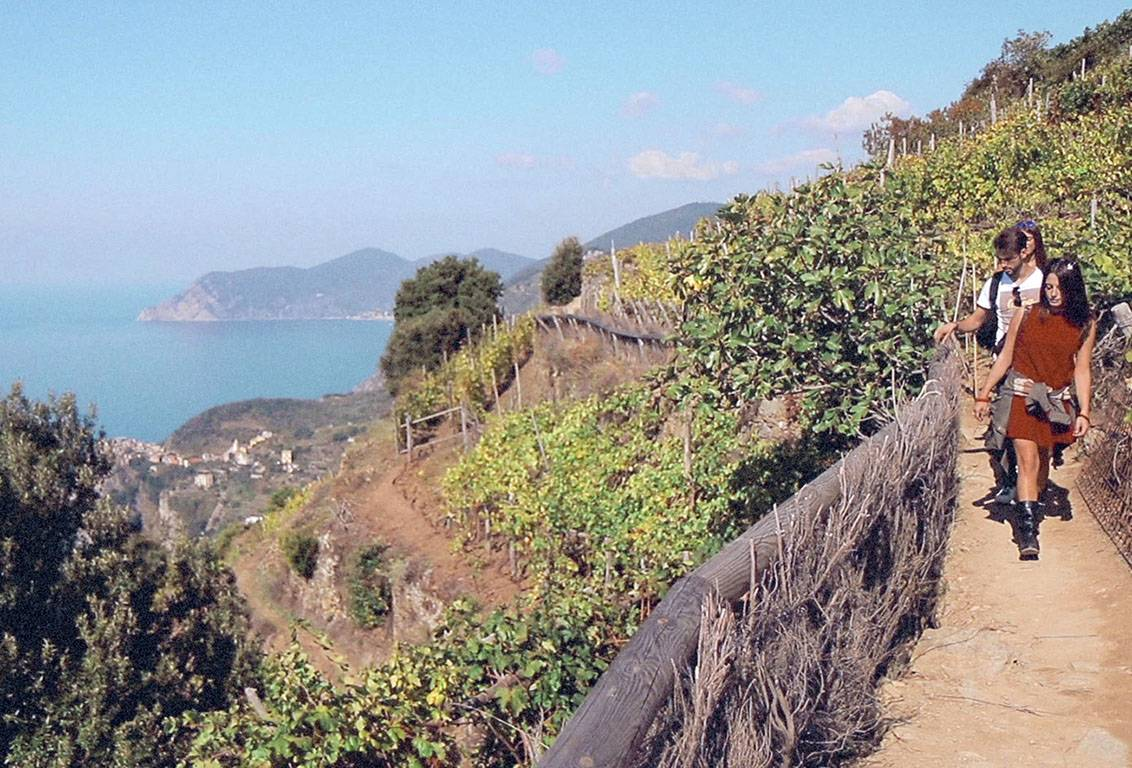 your cinque terre one day trip: walk on the fabulous trails on the ligurian cliff