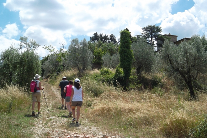 after the hike tour, a delicious typical Tuscan lunch will be served, paired with a taste of elegant wines