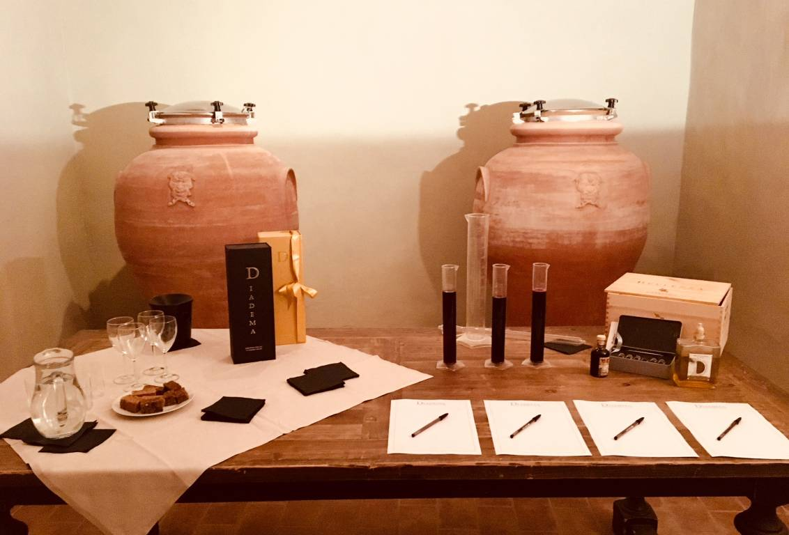 tuscany wine tour: learn about the production of wine and olive oil from an expert