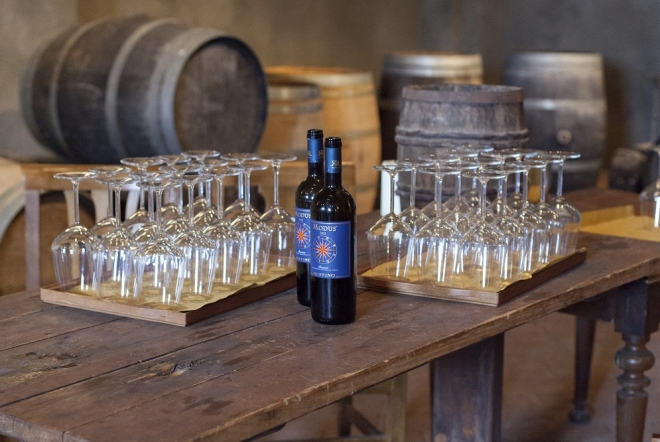 during your ride through the tuscan countryside you will visit a famous winery with its spectacular cellar, producing some of the most renowned Chianti wines