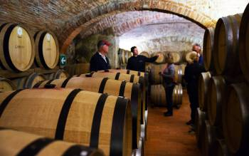 visit three wineries in the tuscan countryside and their wine cellars and learn about the different methods of wine production