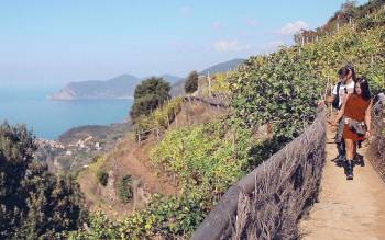 cinque terre day trip from florence: walk on the fabulous trails on the ligurian cliff