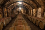 with our wine tour starting from florence, the chianti Classico wine will have no more secrets