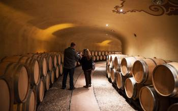 experience our wine tour, get to know Tuscany, join the perfect experience for wine lovers