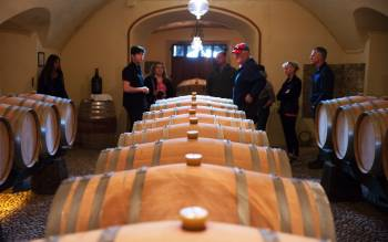with our wine tour discover two of the best wineries in Tuscany and have a gorgeous wine tasting
