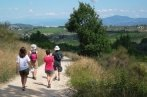 during the hike tour explore the tuscan countryside and its warm materials such as limestone, pietra serena and terracotta