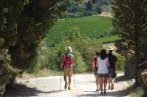 during this tuscany hike tour immerse yourself in the real Chianti wine region: enjoy great landscapes and amazing views, little ancient churches and medieval towers